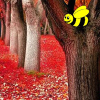 Free online flash games - Autumn Fall Forest Escape