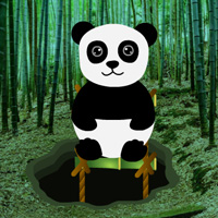 Free online flash games - Bamboo Forest Panda Rescue