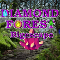 Diamond Forest Bigescape