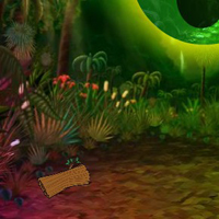 Free online flash games - Fantasy Jungle Escape