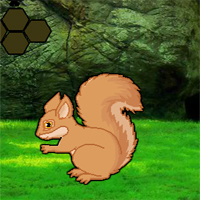 Free online flash games - Missing Squirrel Love Rescue