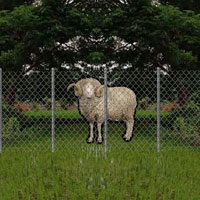 Free online flash games - Nature Village Sheep Rescue