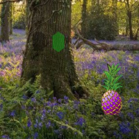 Free online flash games - Spring Bluebells Forest Escape