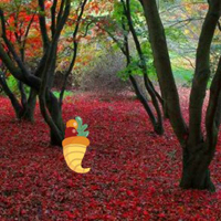 Free online html5 games - Thanksgiving Red Autumn Forest Escape game - WowEscape