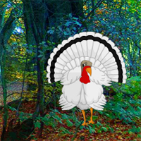 Free online flash games - White Turkey Forest Escape
