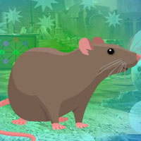 Free online flash games - G4K Rodent Brown Rat Escape