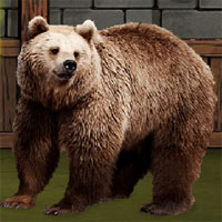 Free online flash games - The Grizzly Bear Rescue