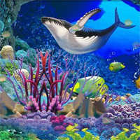 Free online flash games - Underwater Hidden Shell