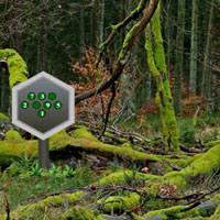 Free online flash games - Parky Forest Escape