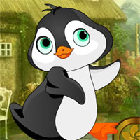 Free online flash games - G4K Lovely Penguin Escape