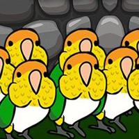 Free online flash games - G2J Caique Parrots Escape