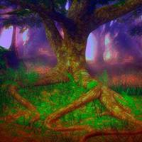 Free online html5 escape games - Wonder Fantasy Forest Escape HTML5