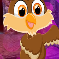 Free online flash games - G4K Small Owl Escape