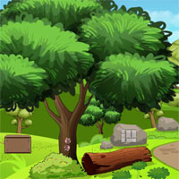 Free online flash games - Top10 Rescue The Wild Boar