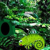 Free online html5 escape games - Chameleon Rain Forest Escape HTML5