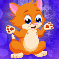 Free online flash games - Games4king Gorgeous Cat Escape