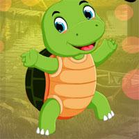 Free online flash games - G4K Small Tortoise Escape