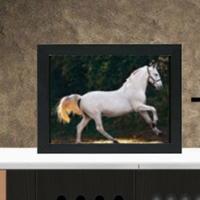 Free online html5 escape games - 8bgames Foal Escape