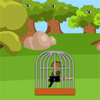 Free online flash games -  8b Woodpecker Escape