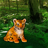 Free online flash games - Help the Lonely Tiger Cub
