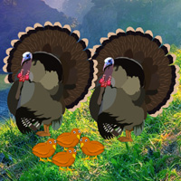 Free online flash games - Thanksgiving Mom Turkey Escape