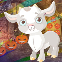 Free online flash games - G4K Baby Goat Rescue Game