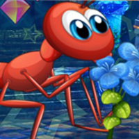 Free online flash games -  G4K Lovely Ant Escape