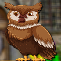 Free online flash games - Avmgames Barn Owl Escape