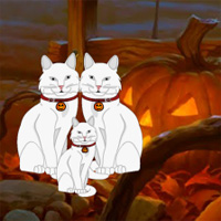 Free online flash games - Wowescape Halloween White Cat Escape